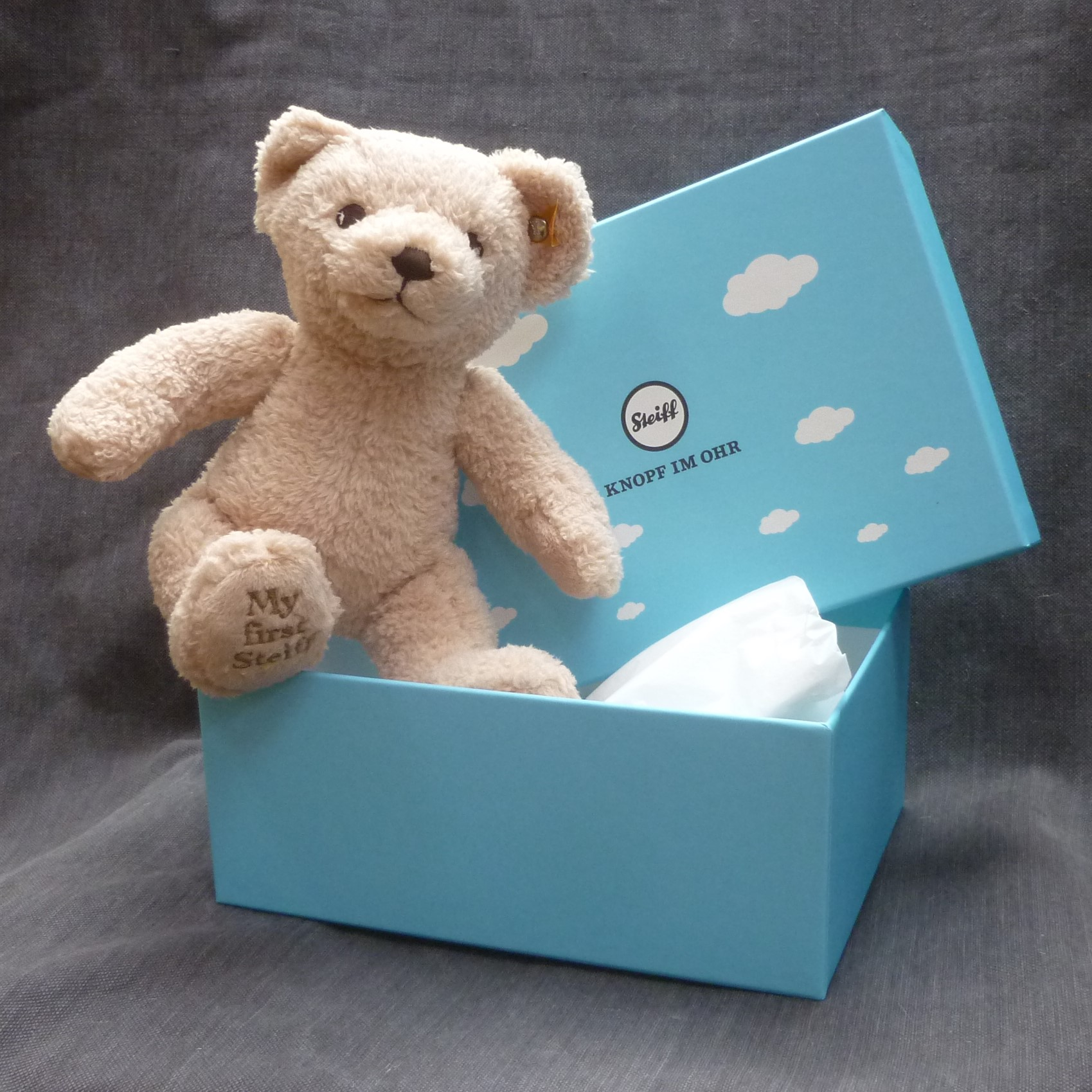 035d1bc07b95 My First Steiff Beige with Gift Box
