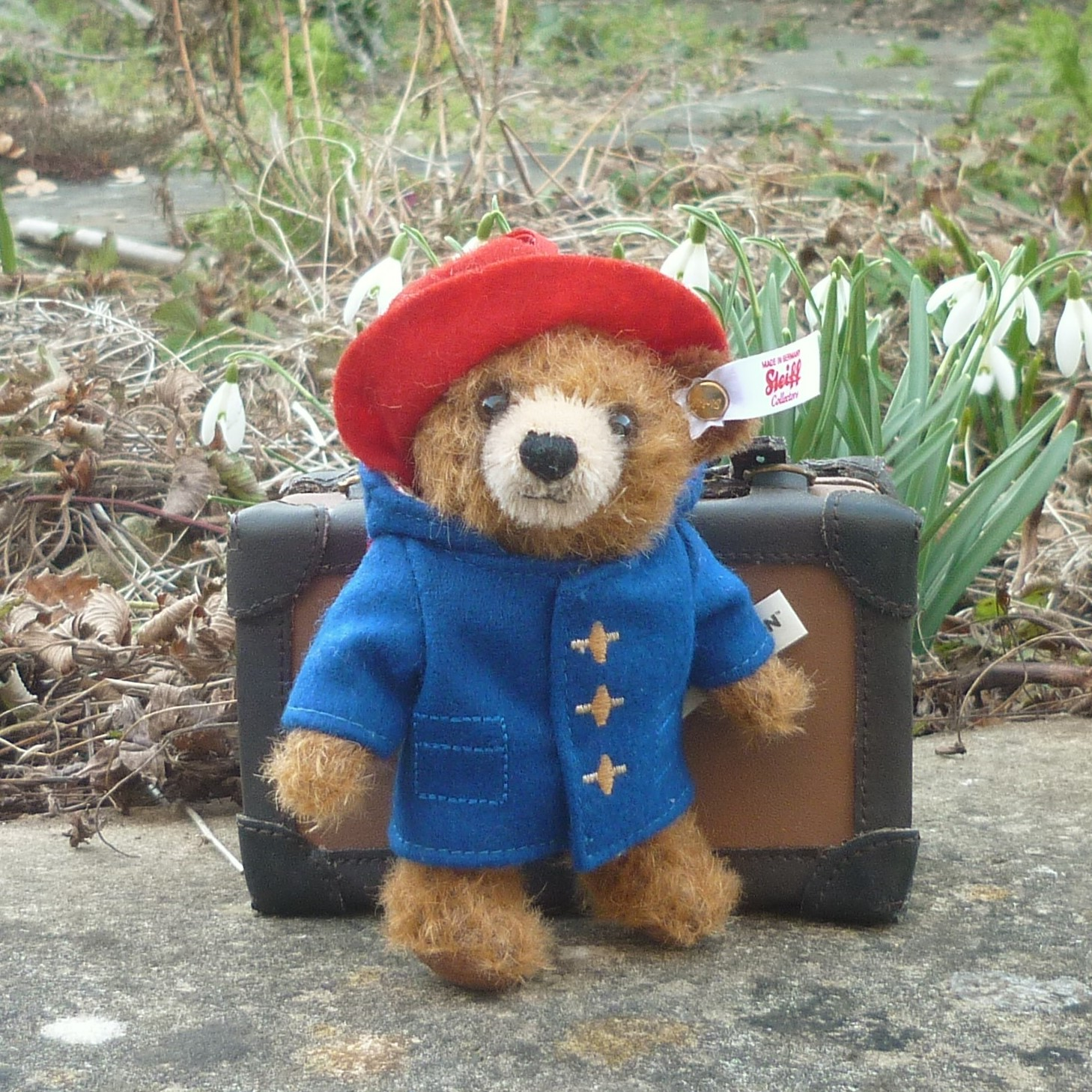 new spring 2018 steiff paddington bear u2122 ornament